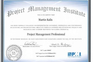 PMP (Project Management Professional)