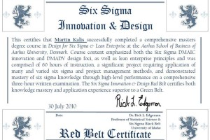 Design for Six Sigma and Lean Enterprise